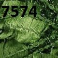 Ланосо Султан - Lanoso Sultan - 7574